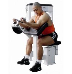 Aparat biceps SPORTMANN