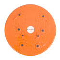 Disc rotativ inSPORTline Magnetic