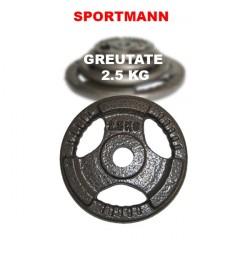 Greutate haltera 2.5kg/31mm Hammerton Sportmann