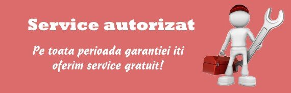 Service autorizat